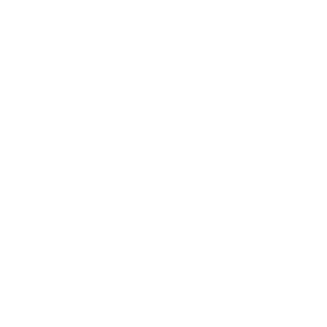 Eagle-Business-Credit-greyscale